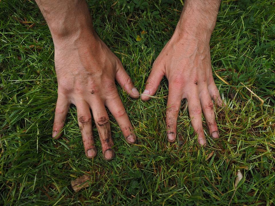 Co t et prix d un paysagiste ou jardinier pour entretien for Jardinier entretien jardin
